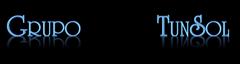 Grupo TunSol