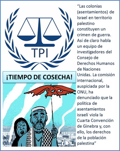 TIEMPO DE COSECHA