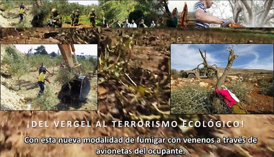 DEL VERGEL AL TERRORISMO ECOLÓGICO